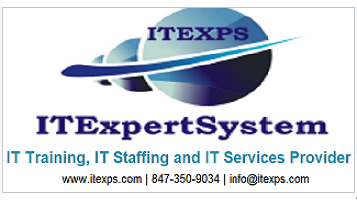 IT Expert System